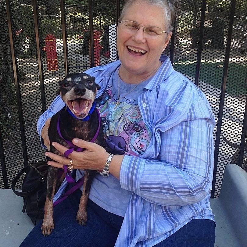 Женщина пришла в приют и попросила отдать ей самую старую собаку, которую никто нее хочет брать. И вот кого они ей дали…