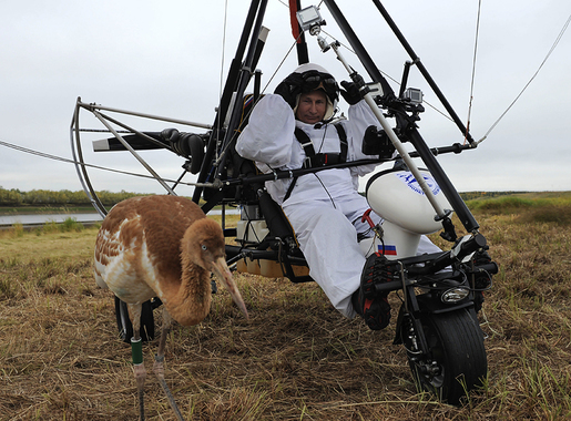 Путин в мире животных: 20 самых милых фотографий главы государства со зверушками