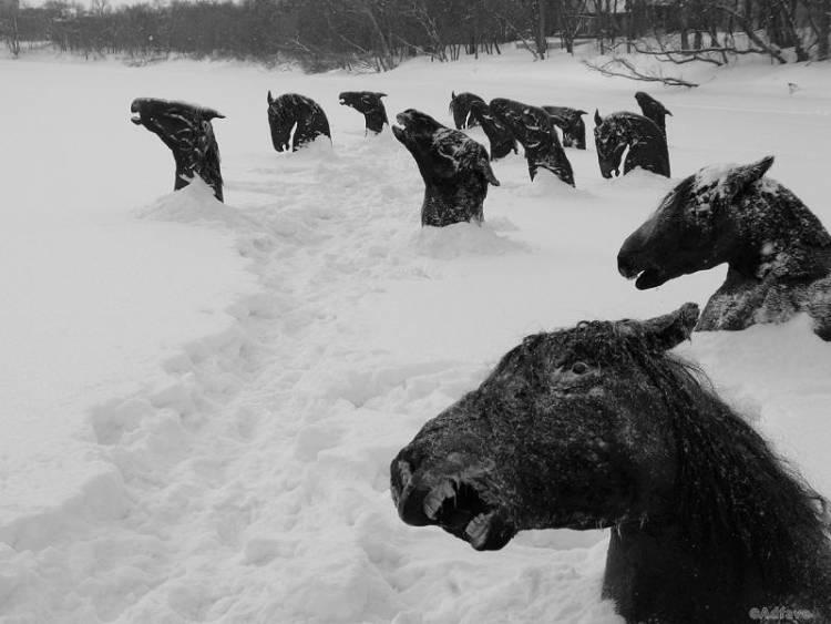 12 жутких снимков прошлого, которые заставят замереть от страха
