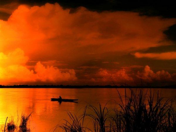 закат солнца в джунглях