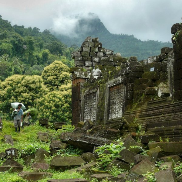 постройки в джунглях
