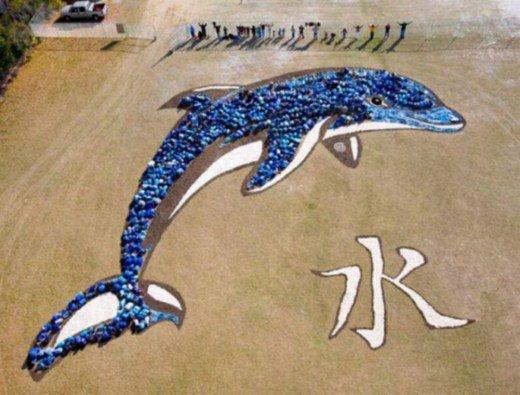 изображение на Земле Дэниела Дансера дельфин