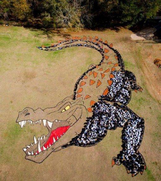 изображение на Земле Дэниела Дансера Крокодил