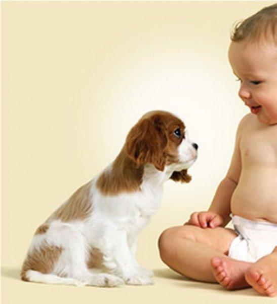 щенок и младенец