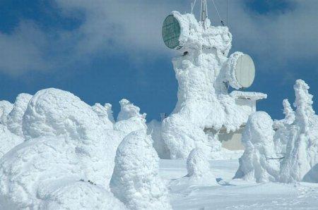 А снег кружится (20 фото)