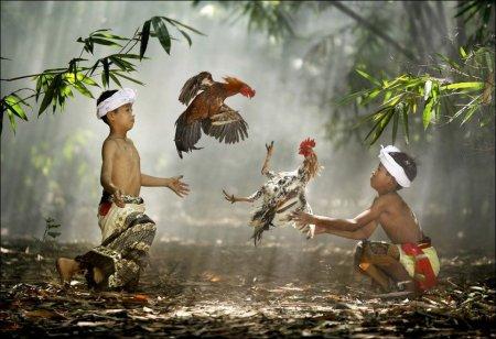 Красивые фотографии со всего света (58 фото)