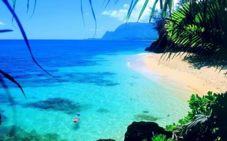 Красивые пляжи (31 фото)