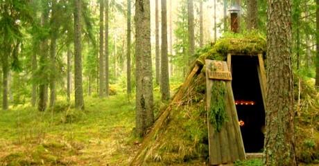 Этот отель находится посреди глухого леса! Его красота завораживает!