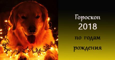 Что вам принесет новый 2018 год Желтой Собаки по Восточному гороскопу