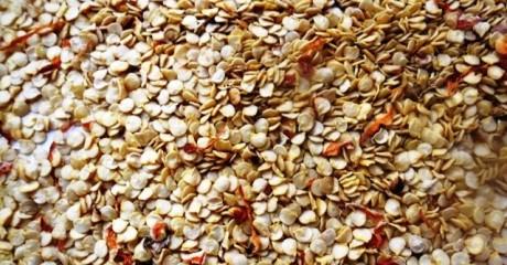 Как выбирать и купить семена овощей хорошего качества?