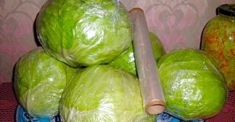 Как хранить капусту, чтобы сохранить ее качества