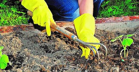 Правила работы в саду или как сберечь спину