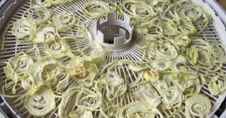 «Очень удобно»: Несколько способов, как посушить лук и спасти урожай.