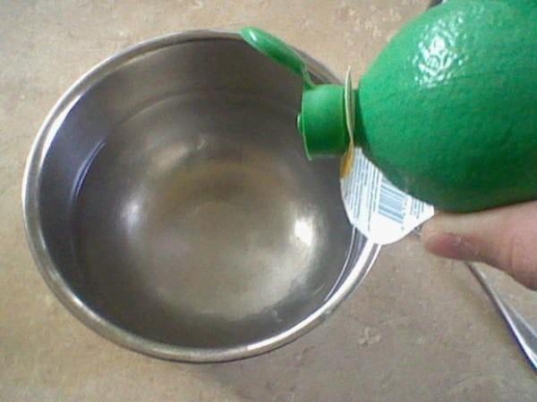 Как с помощью обычного пакета с водой разогнать всех мух в округе