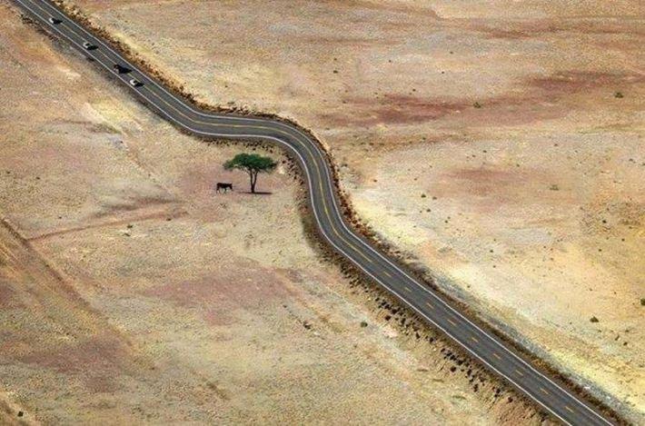 15 прекрасных фотографий о том, что значит уважение к природе