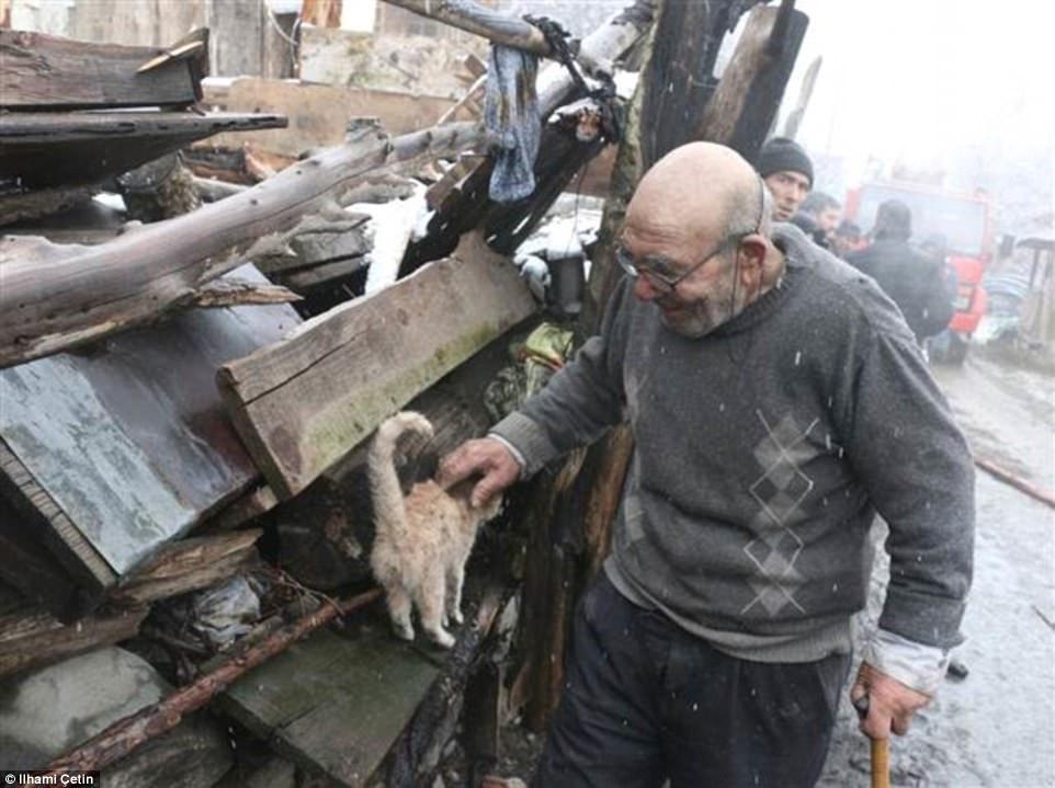 Старик нашел выжившего котенка — это единственное, что у него осталось…
