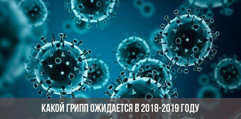 Какой грипп ожидается в 2018-2019 году