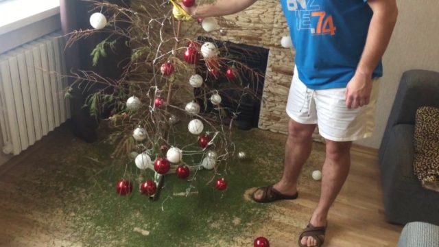 Как продлить жизнь новогодней живой елке в доме?